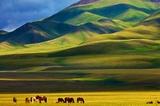 小长假新疆接待游客353.6万人次