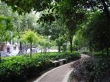 烏魯木齊高新區(新市區)將增20個游園