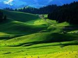 清明出游新疆景區門票優惠一覽